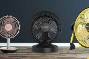 Different Types of Fans